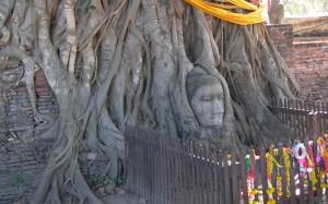 Ayutthaya foto