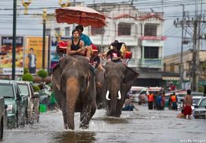 Thailandia-allagamenti-ottobre-2011