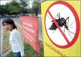 Stop dengue Thailandia