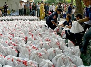Thailandia 2.000 feti in sacchetti di plastica